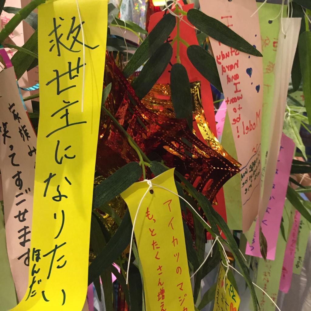 SHIROBACO店内には先日開催された阿佐ヶ谷七夕まつりで飾られていた笹の葉が展示されておりますよ!…僕も救世主になり