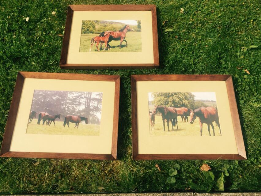Bought 3 old frames from charity shop cleaned and vanished added my own photo artwork TA DAAAAAA !!! http://t.co/2xlkAH9GVi