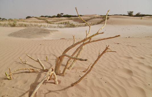 Depuis cette nuit, la Terre vit sur ses réserves http://t.co/Sc6TnHdfGg