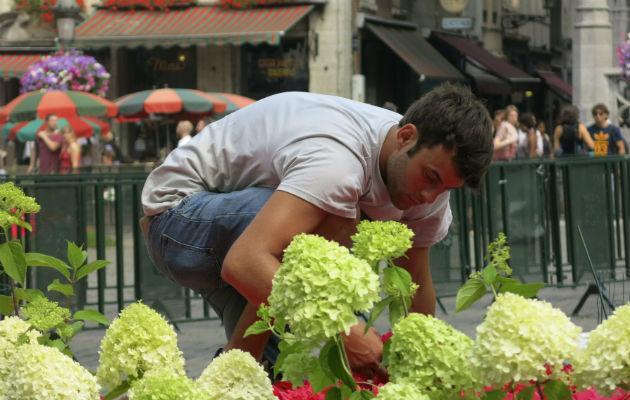 Mundopa los jardines del barroco italiano invaden el for Jardines barrocos