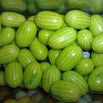 Chiclete de melancia ???? http://t.co/YuBwoh4H92