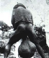 porno-ogromnie-bolshie-yaytsa