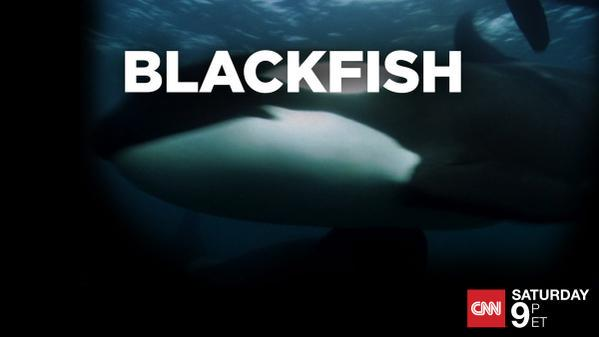 RT @CoveMovie_OPS: Back by popular demand, #Blackfish returns to @CNN TONIGHT at 9pm ET http://t.co/yw065eHKRJ