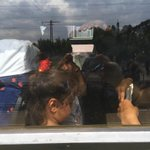Dozens of children still on this train. No movement for more than an hour now. Authorities appear at a loss http://t.co/e7HVTvcaKL