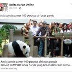 """""""@malaysian_gags: Hahahahaha memanglah. Takkan nak tunjuk ciri asas babi. http://t.co/xfwY7b9cHP""""  Babi betul berita ni. Hahahahha"""