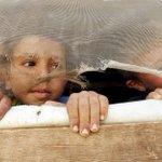 Jeugdjournaal Karrewiet: Kinderen zitten met veel vragen over vluchtelingen @karrewietketnet http://t.co/UYsIk2RtXu http://t.co/wwnhCuXsKh