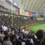 まりほー\(^o^)/大事な試合勝ちました! #chibalotte (@ 東京ドーム (Tokyo Dome) in Bunkyō, 東京都) https://t.co/mzKqG6Djgi http://t.co/3qHsxTdB4C