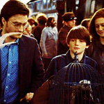 Today is the day James Sirius Potter would be starting at Hogwarts #BackToHogwarts http://t.co/YHf29g8vVR