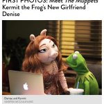 kermits new girlfriend is basically miss piggy after a trip to DR for surgery http://t.co/P2MCgzb1BN