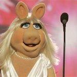 "Miss Piggy, ""Whats good, Denise?"" http://t.co/NUGhEoZZA2"