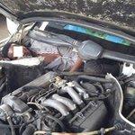 Migrant bound for Spain found crammed under car hood http://t.co/aJCK0nK2V4 http://t.co/jlZyj4jcmU