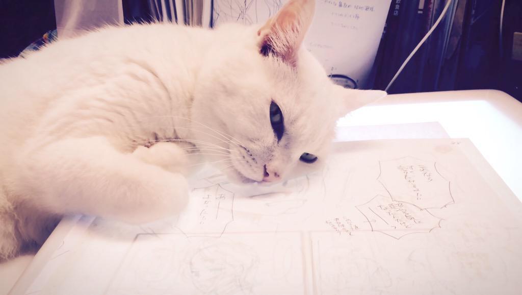 http://twitter.com/mitsuba527/status/639045422724481024/photo/1