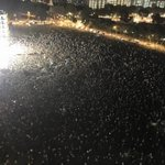 Someone sent me this image. #wpsg rally. #GE2015 #SgElections @wpsg ???????????????????????????????? http://t.co/9rtTxLgh2b