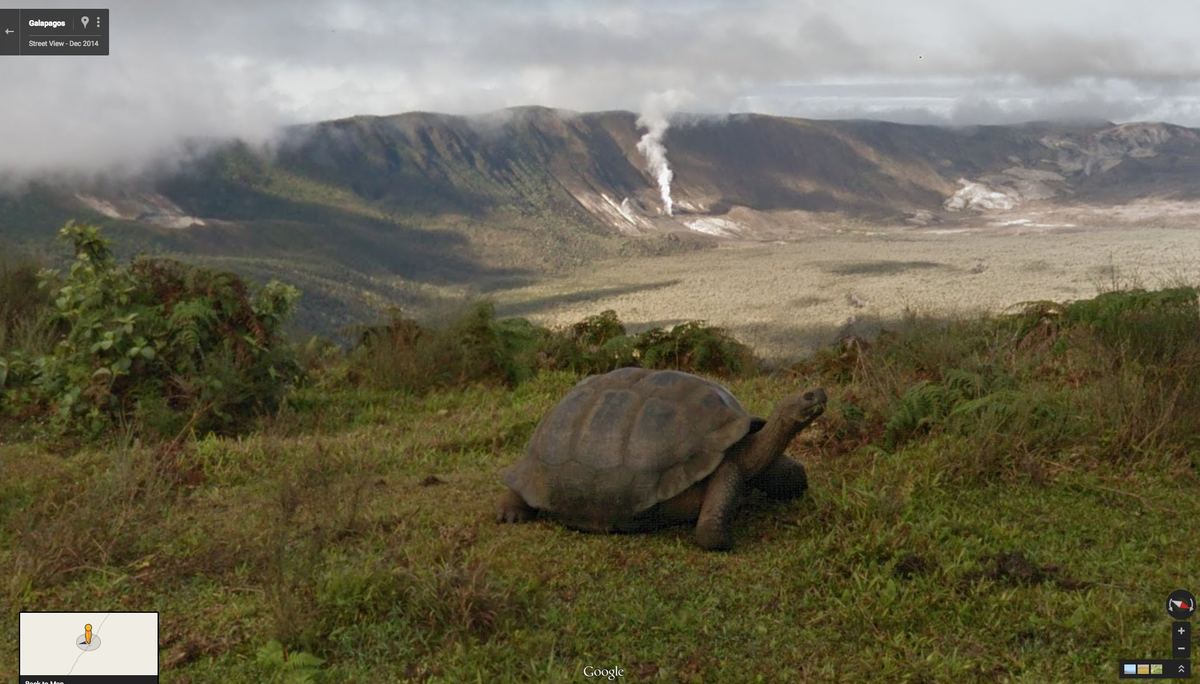 Today we released new 360° imagery of the Galápagos, w/@DarwinFound & Galápagos Natl Parks http://t.co/k1Gbji1J0s http://t.co/FPtzPDc4Tz