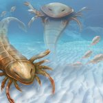 Newly discovered fossils of huge scorpion depict creatures as top predators http://t.co/APytNK6EDb via @LiveScience http://t.co/7WBUaQW8X7