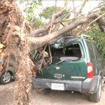 #Honduras: Fuertes vientos derriban rótulos y provocan daños en Tegucigalpa http://t.co/abEE8a3cGI http://t.co/VUKTmQE1bT