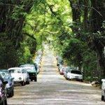 Tegucigalpa normal / Tegucigalpa con 5 minutos de viento. http://t.co/uLFBqdl47N