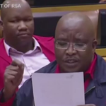 Watch: EFF calls on government to stop all white Bok team at World cup http://t.co/NIJFSvlmT2 http://t.co/3VzZ625sBr