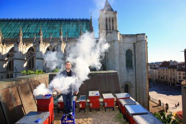Wat doet het goed op daken van #erfgoed? In Parijs zijn #bijenkasten populair.. @bijenbrigade @erfgoed20 @REDDEAARDE http://t.co/cLWAMbbs2t