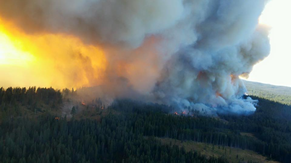 As of p.m., there's been 590,000 acres burned. Active fire acreage is 520,000 acres that continue to burn #wawildfire http://t.co/HJu8d5mCFD