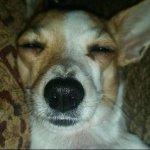 moi quand jallume mon téléphone au réveil http://t.co/m4MgIcCDM1