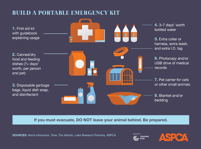 44% of people who refused to evacuate in #Katrina wouldn't leave pets behind. Be prepared. http://t.co/ixfxD3xKHO http://t.co/uuobMaL6Zb
