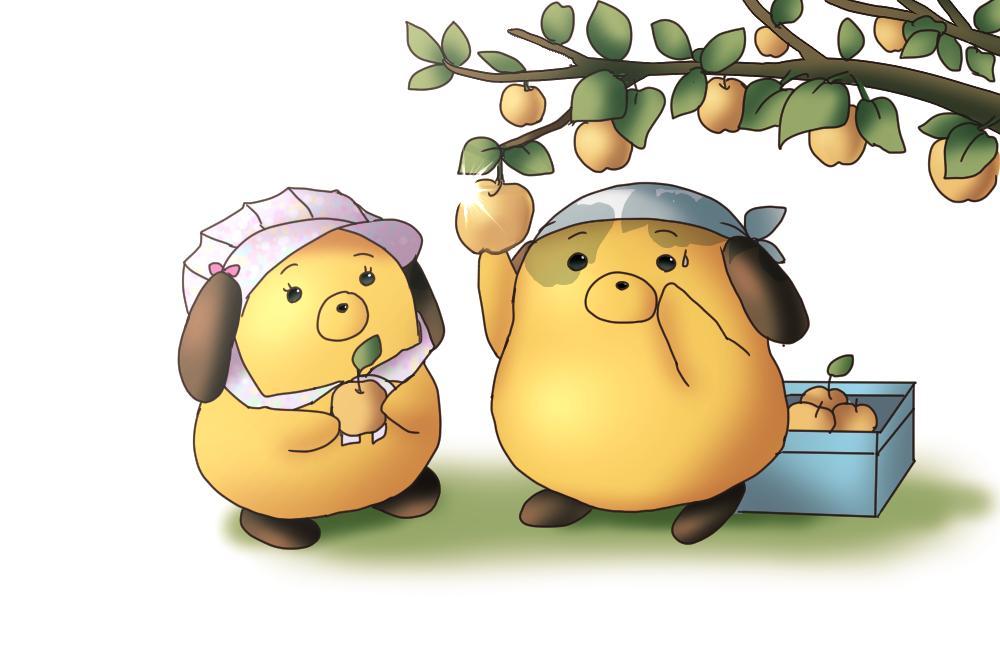 【神戸税関】梨のシーズン到来!梨は輸出もされているんだよ。いろいろな品種が輸出されている中で、きれいな淡緑色の二十世紀梨がたくさん神戸港から輸出されているワン。詳細はこちら→http://t.co/arRe3MG5In http://t.co/XQb56Jh6Jy