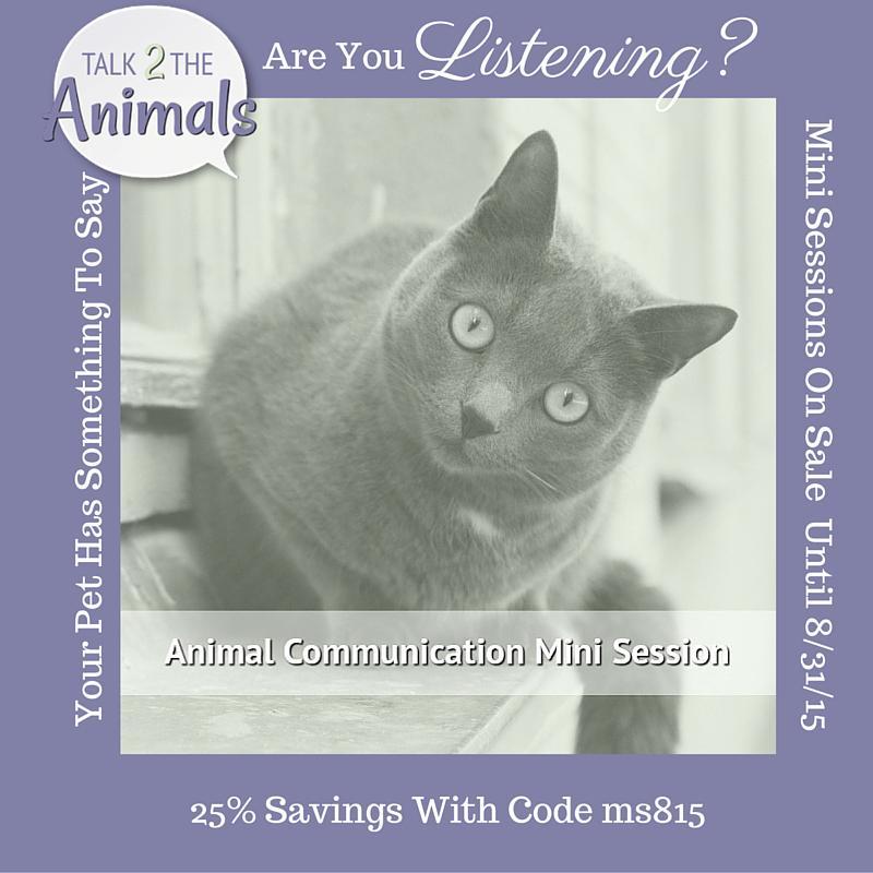 1 more #Talk2theAnimals promo #petchat http://t.co/FG2247VrH9 sale on #animalcommunication mini session http://t.co/dvKhBSG4PD
