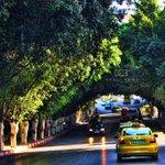 من مدينة #نابلس ???? http://t.co/7swCWqSEYB