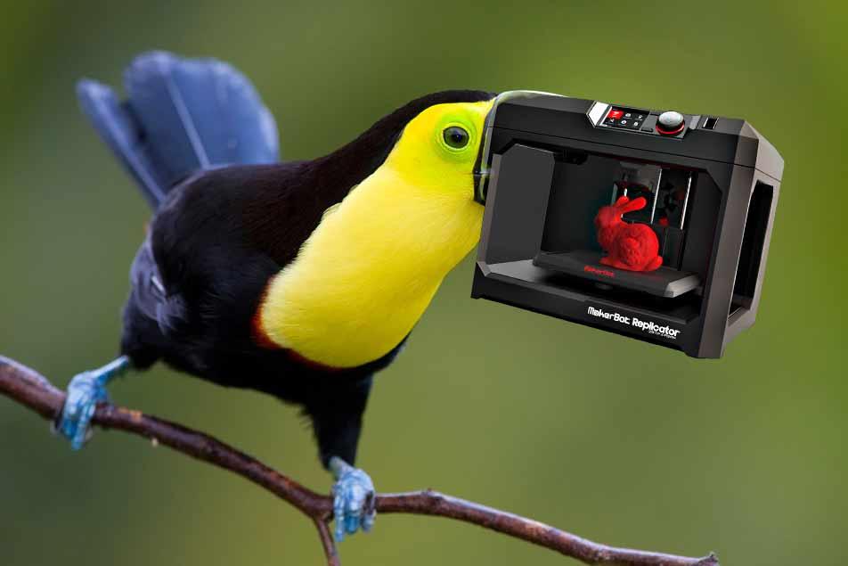 Wetenschappers herstellen snavel verminkte toekan met 3d-printer. Mooi, je ziet het bijna niet. http://t.co/X4tP8oKNHJ