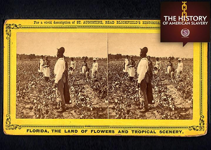 the existence of slavery in present day america in slavery in the land of the free a book by kevin b Authors and authorities on modern day slavery kevin bales and door human trafficking and slavery in america land of the free 1 the old slavery.