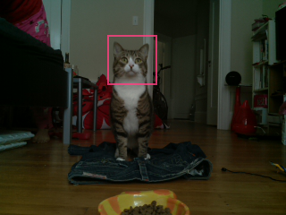 Source code for KittyCam, @Raspberry_Pi & #NodeJS w/ cat facial detection is now on GitHub