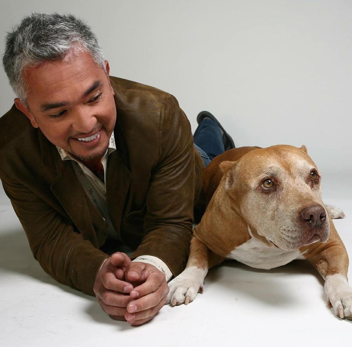 Happy National Dog Day! Larry King Talks to 'Dog Whisperer' @cesarmillan http://t.co/xBx2z9pnp9 @kingsthings http://t.co/8AdcFBVn6l