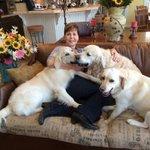 RT @JoyceMeyer: It's always a good day to make new friends. #NationalDogDay
