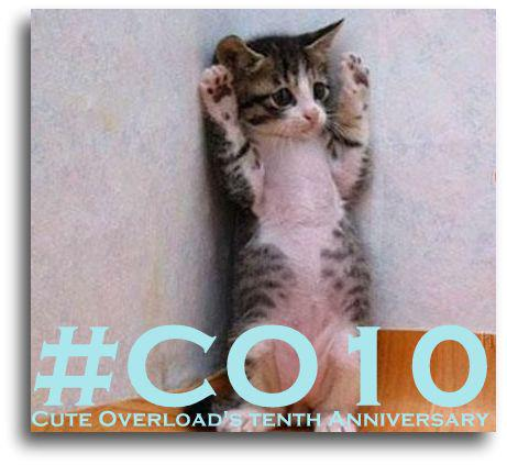 Coming soon! #CO10 http://t.co/Yr8OW0C694