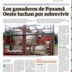 #ProvinciasPA Los ganaderos de Panamá Oeste luchan por sobrevivir http://t.co/3Nw7jeQlV9 http://t.co/ML4i2ul4c2
