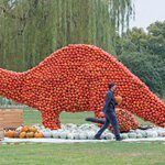 Exposição tem dinossauro feito de abóboras na Alemanha http://t.co/qKNvtk3Xyp #PlanetaBizarro #G1 http://t.co/NJJubWifCx