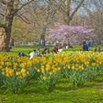 "But which is the best? ""@visitlondon: Challenge! Can you name all @theroyalparks in #London? http://t.co/YWbCfxiwVF http://t.co/fCfEGz0UuR"""