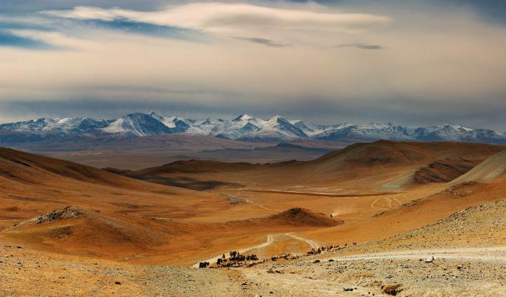 #Mongolia is the least densely populated country in the world with just four people per square mile #factfriday http://t.co/zlJ7eTVHuK
