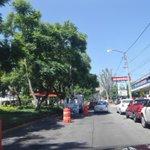 @Trafico_ZMG Poda de árboles en Pablo Neruda en entre av. Provincia y Montevideo http://t.co/MGJsEm9JcW