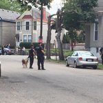 Officers standing by with an assault rifle and K9. @WHAS11 http://t.co/zO3r9qjjgE