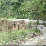 #Provincias: Carretera en Chiriquí afectada por fuerte temporal estará reparada en dos semanas http://t.co/Uj9WBe9tpb http://t.co/K0As15J8qQ