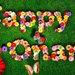 Happy Onam   ഹാപ്പി ഓണം