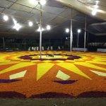 @HinduAmericans world Record holding flower carpet on ONAM celbration#Happy onam to all http://t.co/N5w7sz2kmK