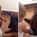 Perro aguanta que su pequeña ama lo alimente a cucharadas → http://t.co/ITDkT0iCq0 http://t.co/SvcpAtDTiU
