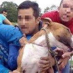 Hablan los acusados de asesinar al perro Dominic http://t.co/jRXuB9L77p http://t.co/R6QHmhaTKv