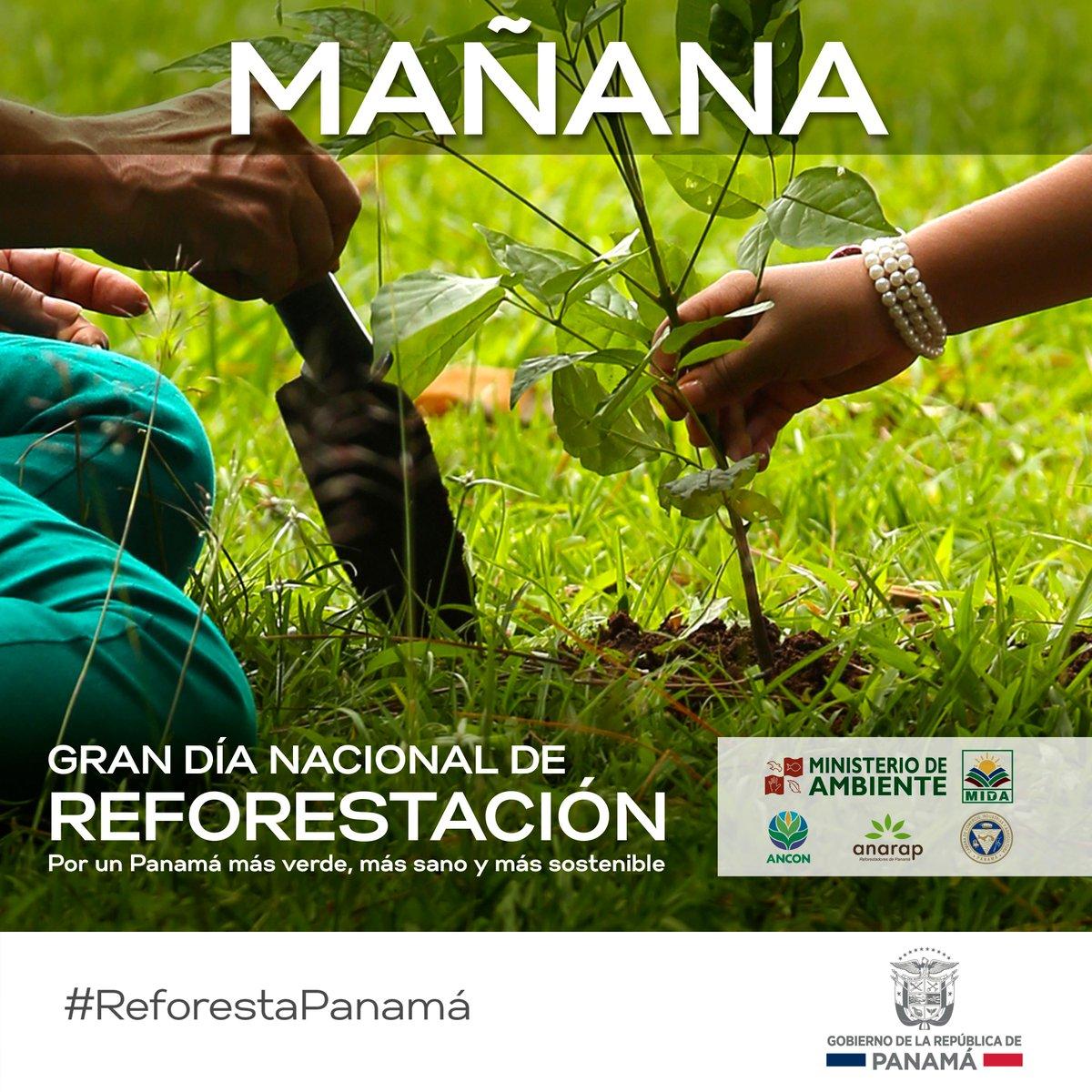 Reforestemos por el futuro de nuestro medio ambiente, nuestro hogar.  #ReforestaPanamá http://t.co/GsfCzTkjG7