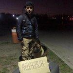 Perrito que no pudo viajar en avión hasta #Antofagasta se fue por tierra ... #LaSerena http://t.co/GMZhguRYU8 http://t.co/2JF0CcusPH