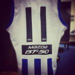 Todays jumper for the 250 gamer. More photos from the rooms at https://t.co/bTGlE0cBza #aflnorthdogs http://t.co/oKK1nrDk3c