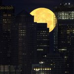 jimkelley33 RT pictureboston: #Bostons moonset, as I photographed it at 5:36am this morning. Good morning. boston… http://t.co/zfJwXOEkrP
